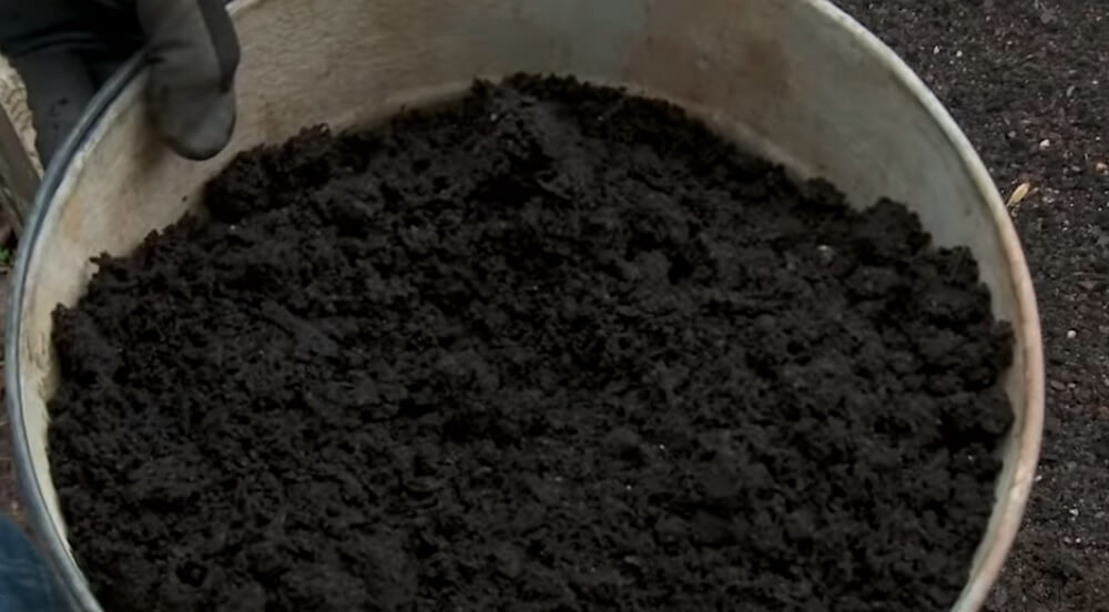 Mushroom compost to prepare the soil for the raised beds