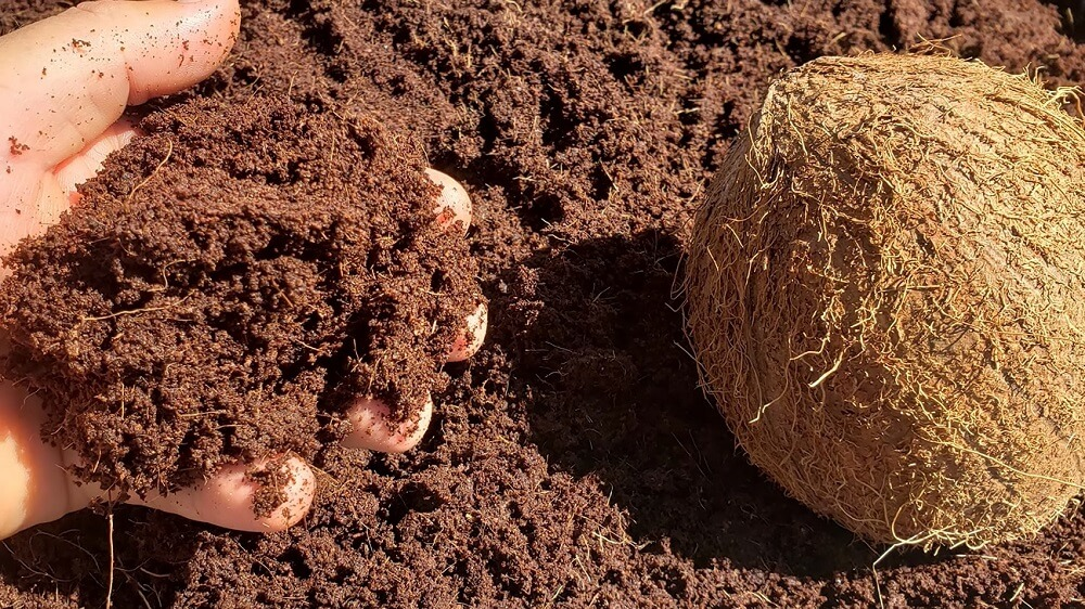Where does Coconut coir come from