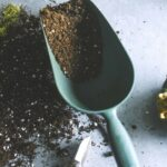 How to reuse and recharge old potting soil (4 Easy Methods)