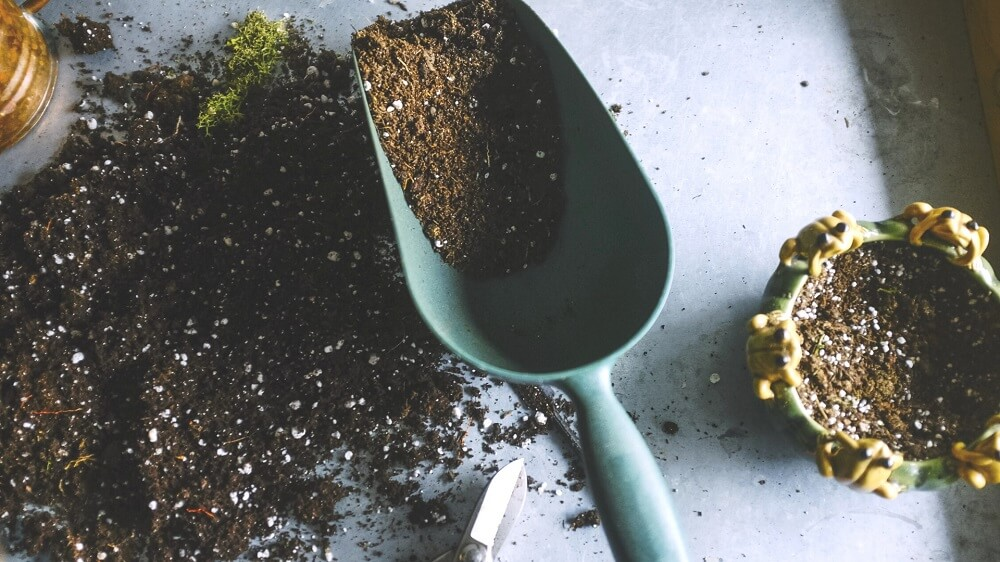 reuse and recharge old potting soil